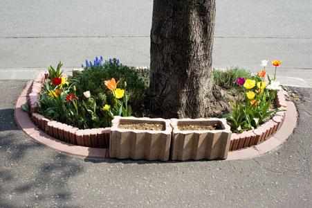Flores en el tico gestos espont neos for Accesorios para jardines pequenos