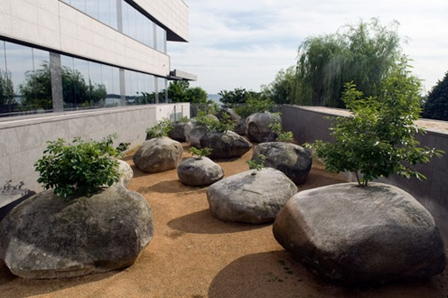 flores en el tico enraizado en piedra