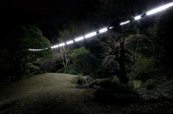 Flores en el tico puente del luz fluorescente - Lapuente exteriorismo ...